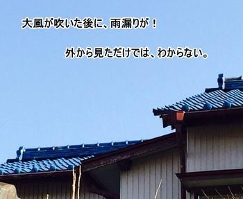 2015-3kasiwaguma02.JPGのサムネール画像のサムネール画像