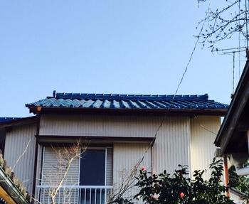 2015-3kasiwaguma03.JPG