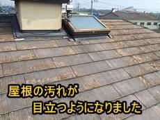 トップ倉田.jpg