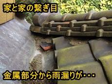 トップ富沢.JPG