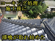 トップ山崎.JPG