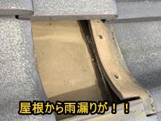 トップ木内.JPG