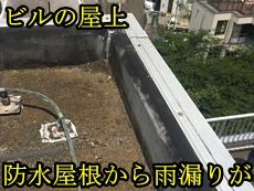 新保トップ.JPG