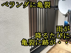 金子トップ.JPG