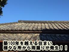 20160315ko301.jpg