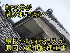 30382_top.jpg