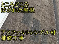 30391Ytei-top.jpg
