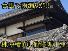 30392Ttei-top.jpg