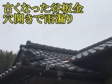 30399h_top01.jpg