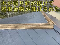 30420d_t.jpg