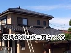 47-20003080k_top.JPG