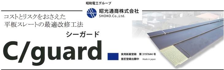 Cguard_1.jpg