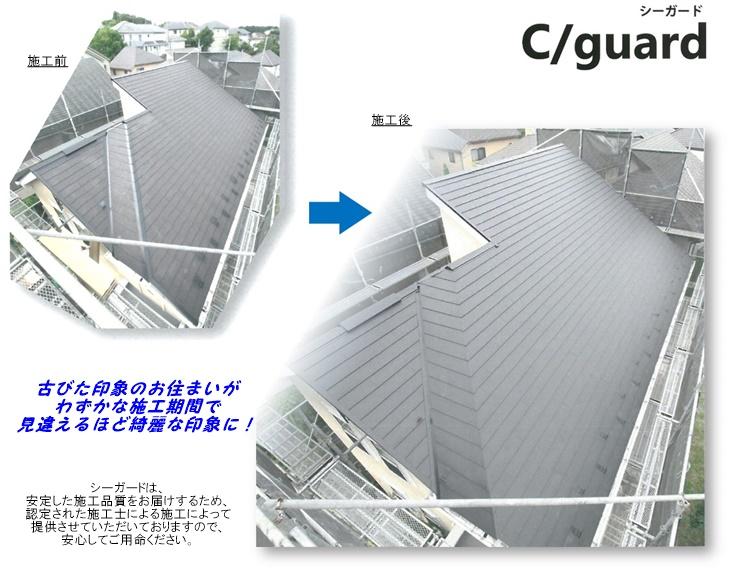 Cguard_c05.jpg